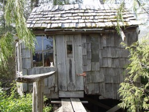 tree house east side